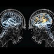 CFL concussion case fails for lack of jurisdiction.