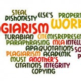 Plagiarism renders expert report inadmissible.